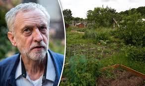 Corbyns Allotment